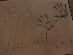 Mark Hamill handprints in concrete at Hollywood Studios